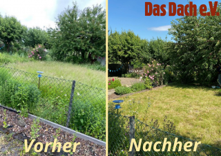 Schrebergarten in Sommerform
